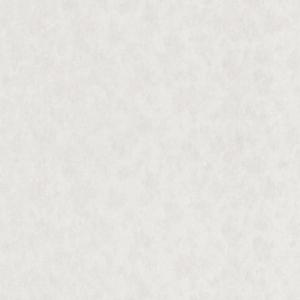 Вінілові шпалери Статус 9056-17